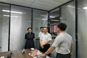 成都市龙泉驿区副区长杨伟一行莅临清研微视参观考察